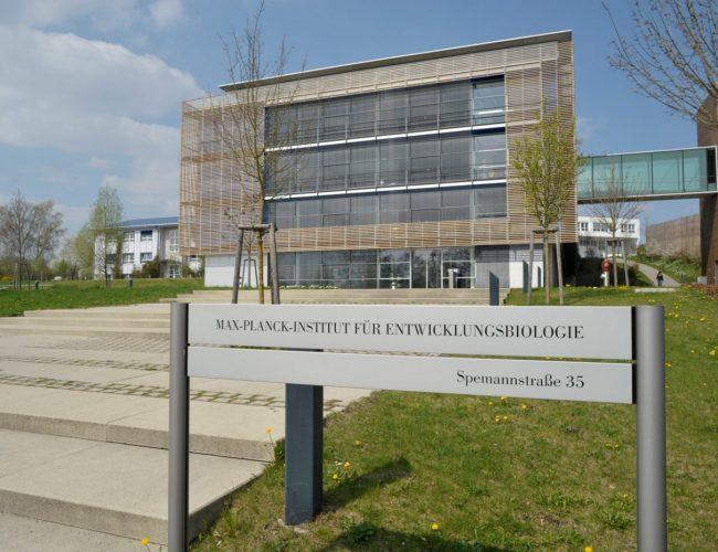 Max Planck Institut Sonnenschutz